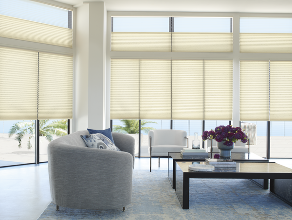 HoneyComb Shades Duette